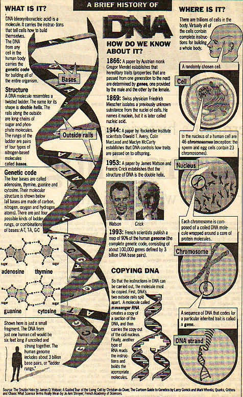 DNA- select interesting articles