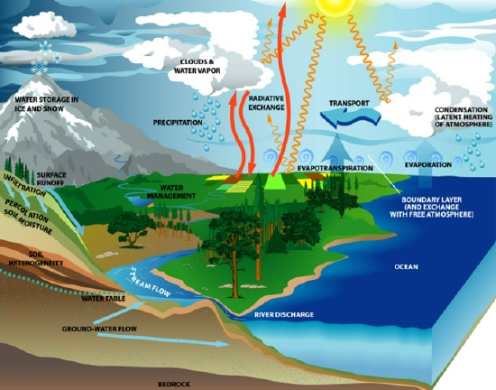 ../INFO/LIMNOLOGY/PIC/WaterCycle_usgcrpgovrev.jpg