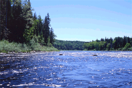 Allagash River- Thank you Govt. of Miane
